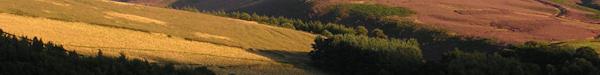 Goyt Valley View