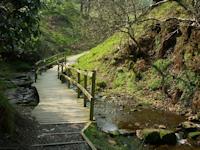 Goyt Valley